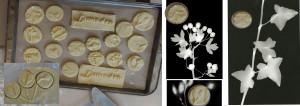 LumsdenFotogram-Biscuit